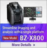 [New Model]Streamline imaging and analysis with a single platform BZ-X800