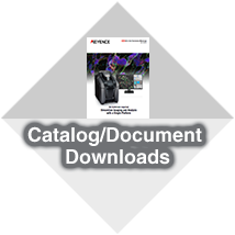 Catalog/Document Downloads