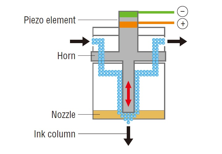 Cannon (piezo element and nozzle)