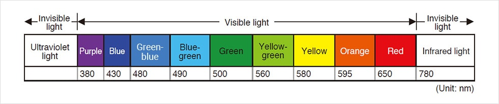 [ Invisible light: Ultraviolet light][ Visible light : Purple 380 / Blue 430 / Green-blue 480 / Blue-green 490 / Green 500 / Yellow-green 560 / Yellow 580 / Orange 595 / Red 650 ][ Invisible light : Infrared light 780 ](Unit: nm)