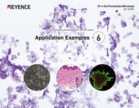 BZ-X800 All-in-One Fluorescence Microscope: Application Guide Vol.6